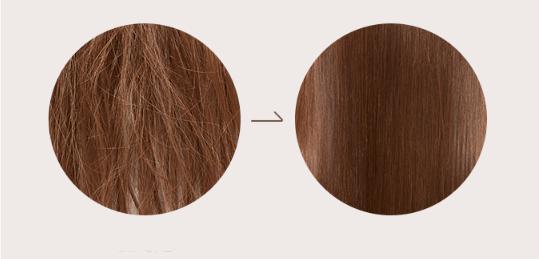 35b4ddb8a351b0-missha-damaged-hair-thera
