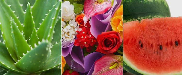 v5d370d2789514-a-pieu-pure-block-natural-daily-sun-cream-5.jpg